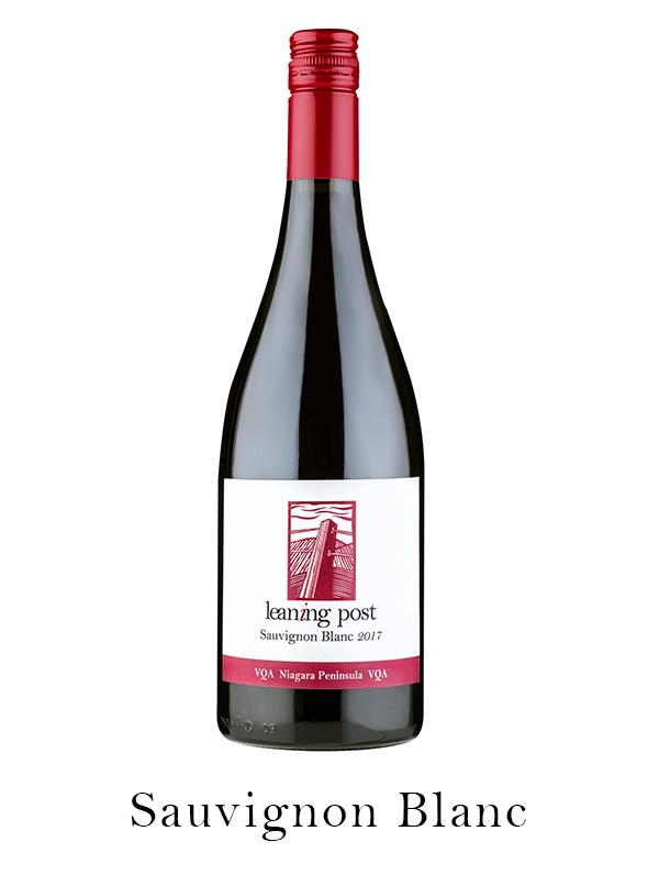 Sauvignpn Blanc wine bottle